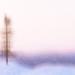 Blur by humphreyhippo
