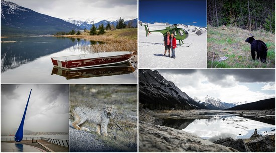MFPIAC72 Collage Vacations by purdey
