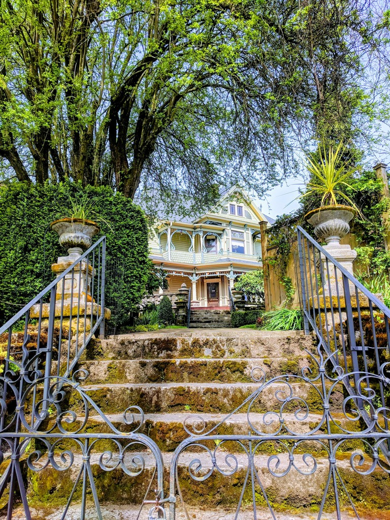 Portland House by bambilee