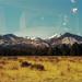 45 Twin peaks
