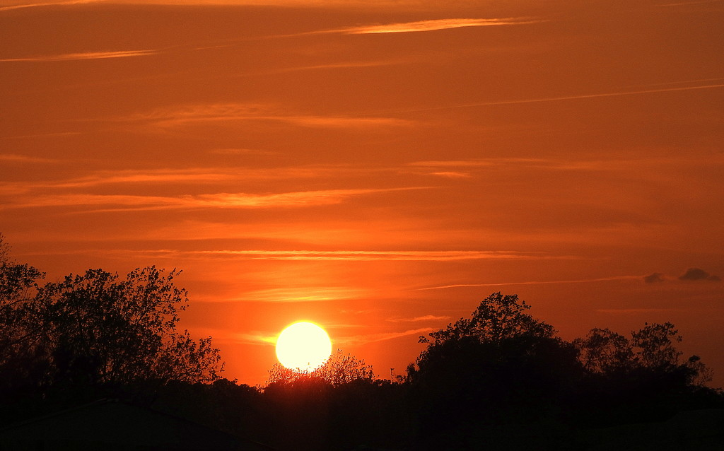 Golden Sunset by homeschoolmom