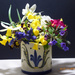 Spring flowers from the garden....