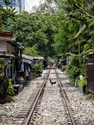 11th Apr 2018 - Life on the rail tracks (3)
