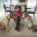 Three Dog Circus