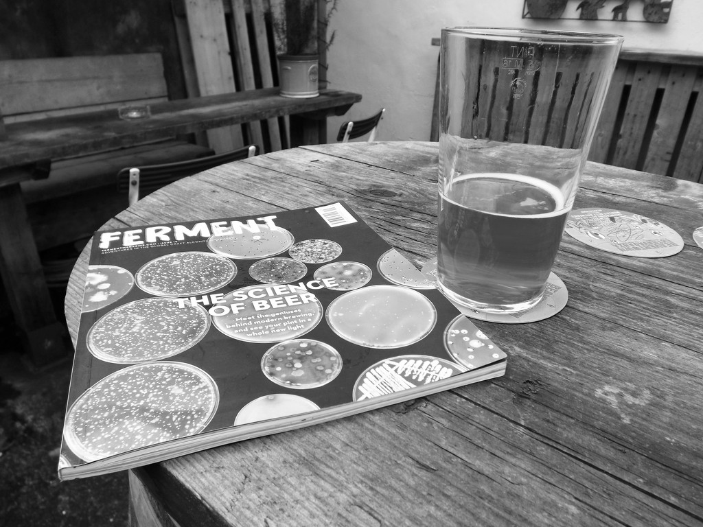 Ferment - The Science of Beer by ajisaac