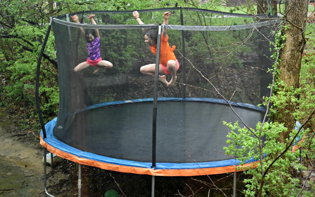 Rainy Day Trampoline Play by alophoto