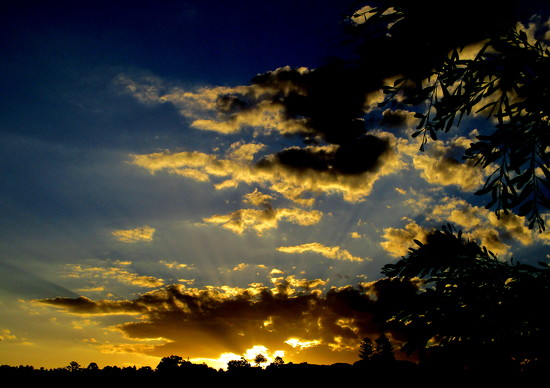 Last nights sunset  Nambour  Queensland by 777margo