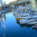 Tilt Shift Harbour