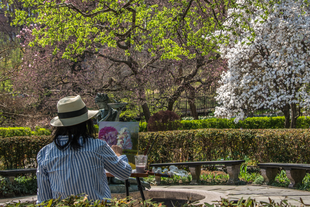 Hard at Work in Central Park by taffy
