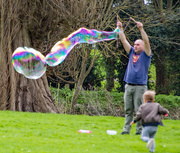 16th Apr 2018 - I'm forever blowing bubbles