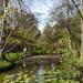 Legendary Pond