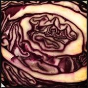 17th Apr 2017 - Cabbage