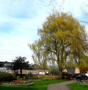 17th Apr 2018 - Willow Court