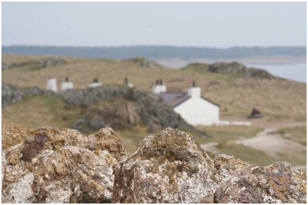 The back of the pilots cottages on Llanddwyn Island by lyndamcg