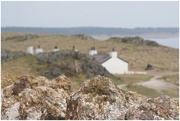 17th Apr 2018 - The back of the pilots cottages on Llanddwyn Island