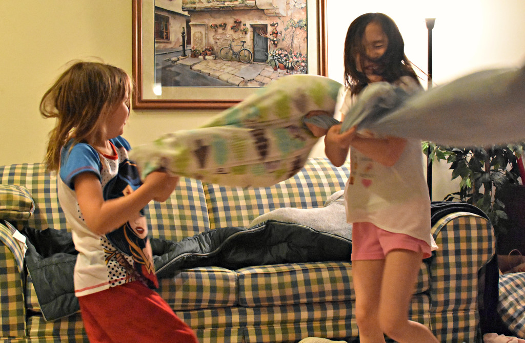 PILLOW FIGHT!!! by alophoto