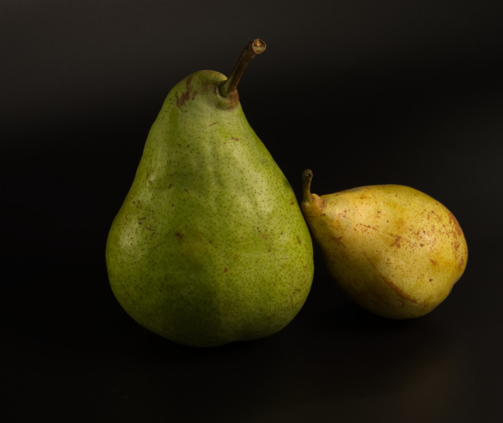 Two Pears  by fr1da