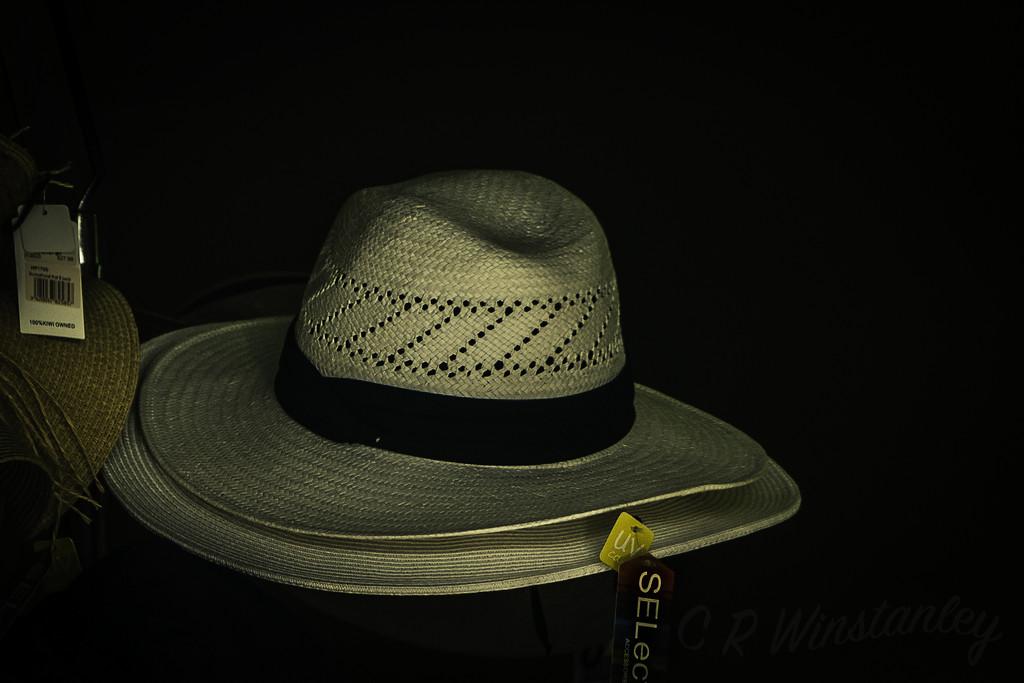 Hats on a Rack by kipper1951