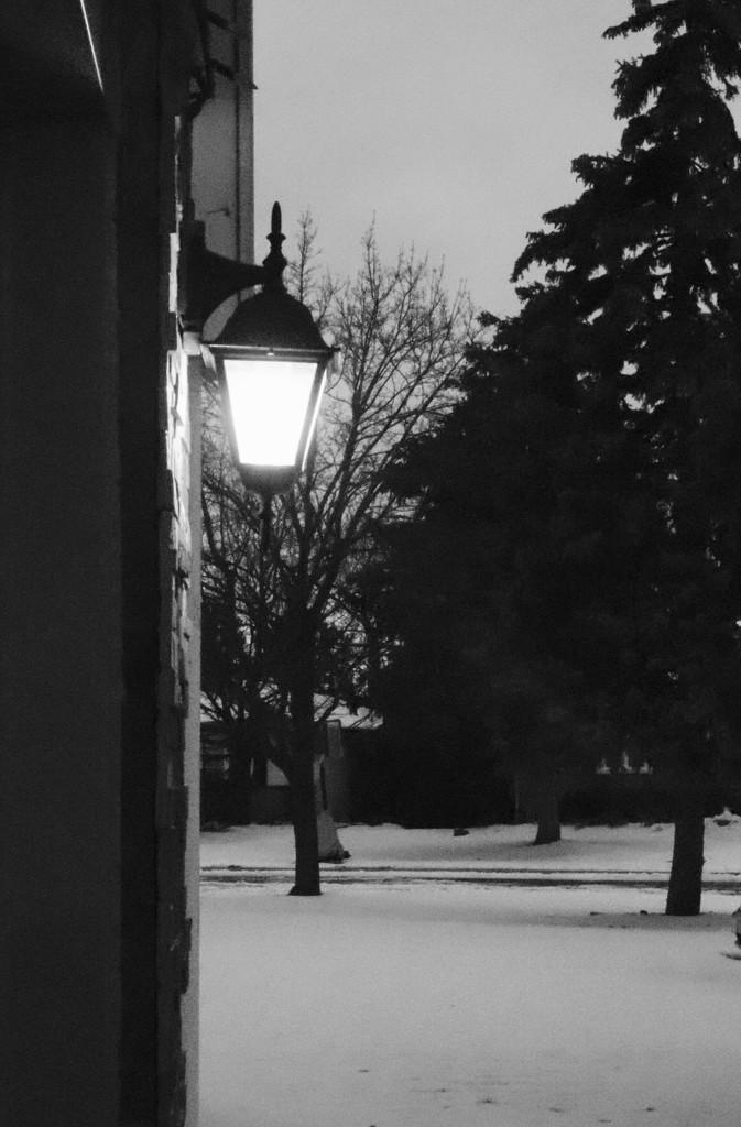 Night Light by chloette