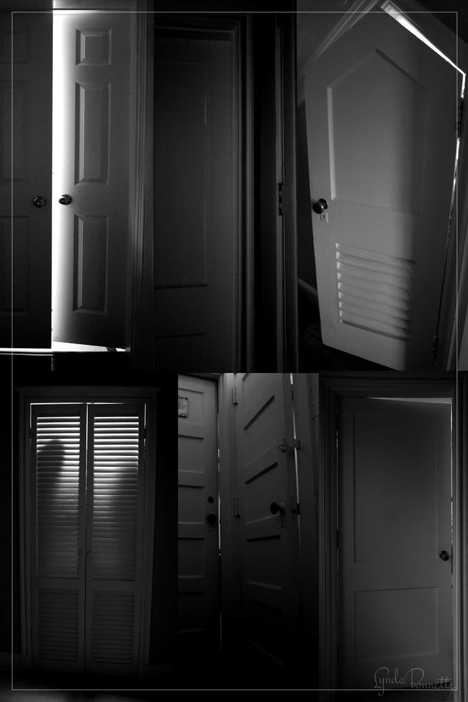 Mystery Door by lynbonn