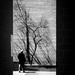 Shadows by vera365