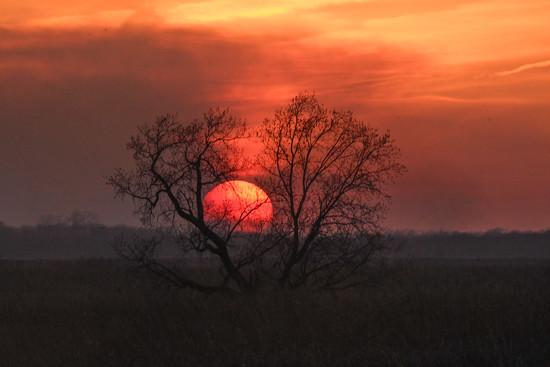 Kansas Sunset 4-19-18 by kareenking