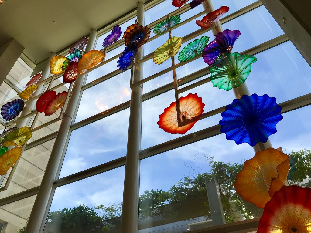 Dale Chihuly at the Dallas Museum of Art by louannwarren