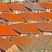Orange Roofs