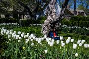 20th Apr 2018 - Relaxing in a Garden