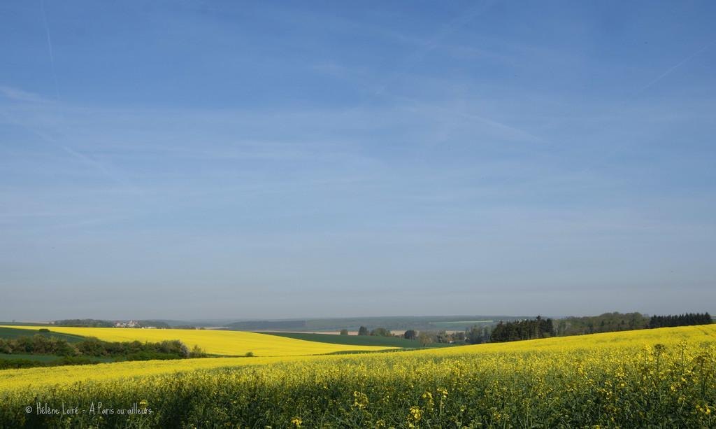 yellow time  by parisouailleurs