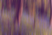 21st Apr 2018 - Bluebell Blur