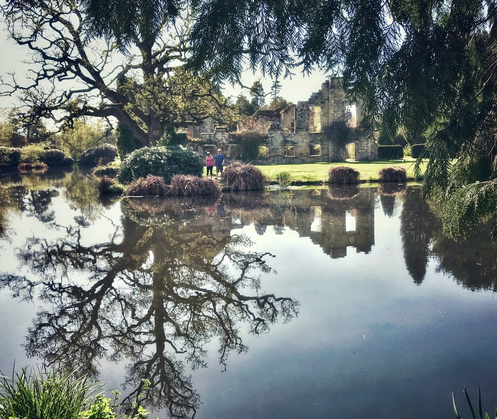 More reflections  by suesmith