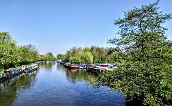 River Lea sunshine by boxplayer