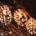 Gamekeeper lights