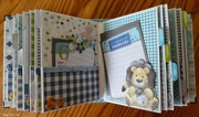 23rd Apr 2018 - Baby's first year memory book