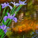 Irises, Magnolia Gardens by congaree