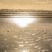 Golden Light Shining on Black Sand by yorkshirekiwi