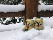 19th Apr 2018 - Rocky Mountain Refreshment