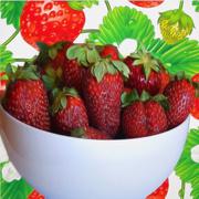 21st Apr 2018 - It's Strawberry Season!