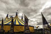 26th Apr 2018 - Circus in Town