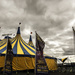 Circus in Town