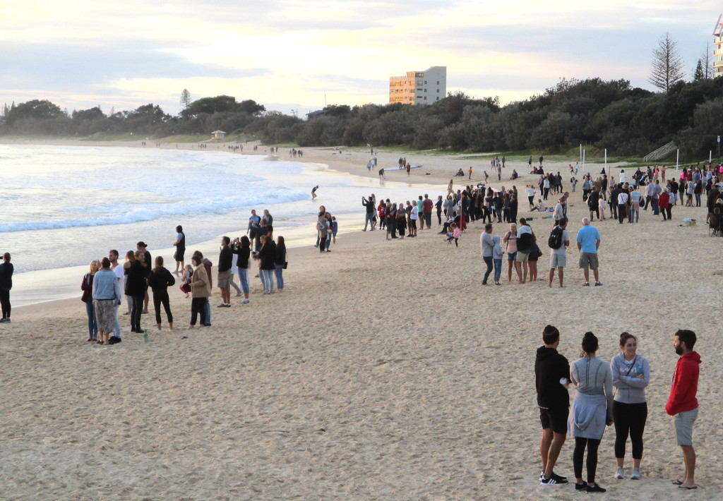 After the  ANZAC Serive on the beach at Mooloolabah   6-30am  25th April by 777margo
