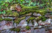 27th Apr 2018 - Mossy dry-stone wall