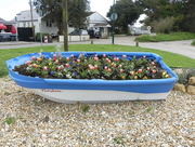 28th Apr 2018 - A Boat Full Of Flowers