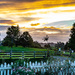 Waikare Sunset by yorkshirekiwi