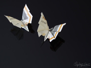 27th Apr 2018 - Origami