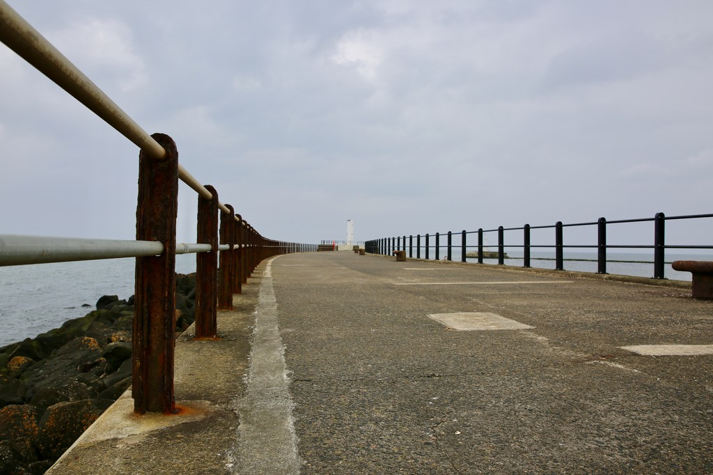 110/365 - The Pier  by wag864