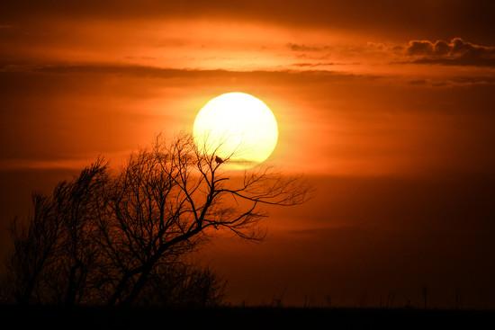 Kansas Sunset 4-30-18 by kareenking