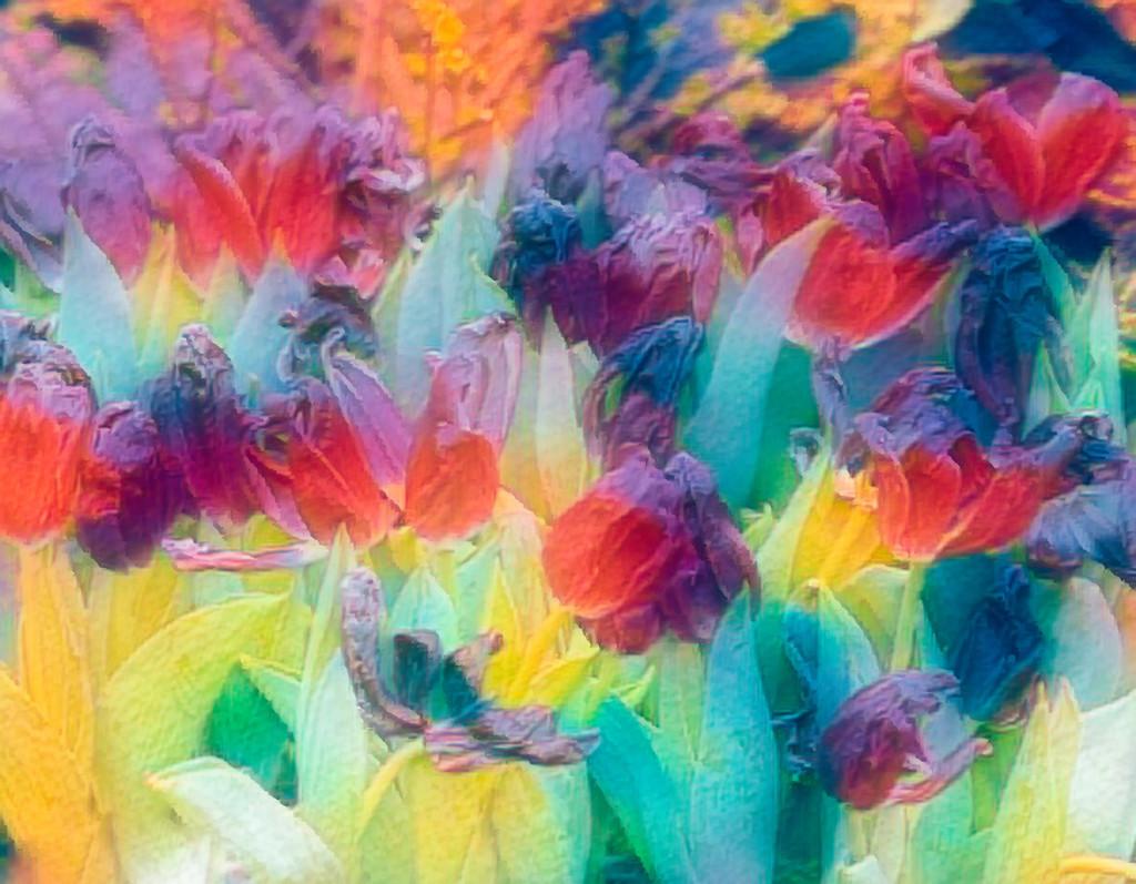 Pastel  by cdonohoue