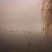 Avian in the mist by adi314